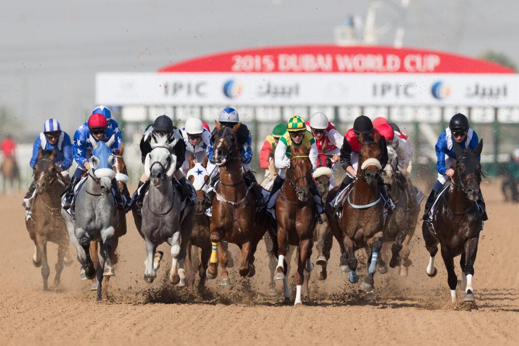 Dubaï, aussi pour les amoureux d'équitation 2