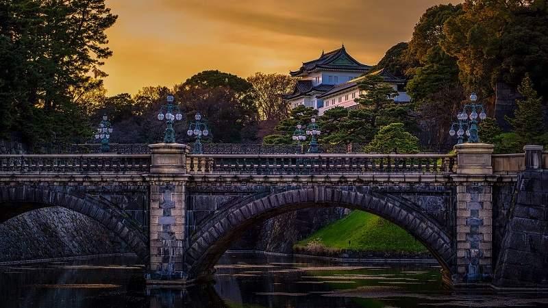 Découvrez comment survivre à Tokyo 5